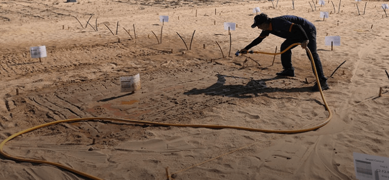 The clay is sprayed directly onto the ground before the plants are watered like any other irrigated crop (Credit: Desert Control)